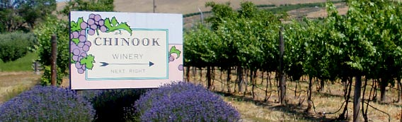 Chinook Winery