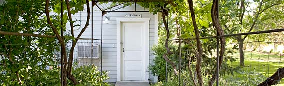 Chinook Wines grape arbor